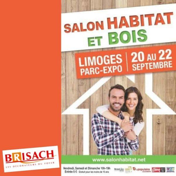 Chemin es et po les brisach po les bois granul s - Salon de l habitat chambery ...